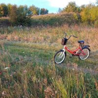 Пейзаж с велосипедом! :: Елена Хайдукова  ( Elena Fly )