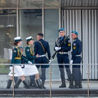После парада :: Сергей Басов