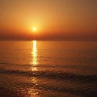 Прогуляться бы по солнечной дорожке :) :: Swetlana V