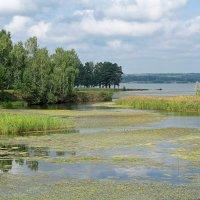 Река Чингис :: Дмитрий Конев