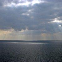 Солнечный дождь :: Татьяна Ларионова
