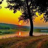 За рекой за лесом солнышко садилось ! :: Анатолий Святой