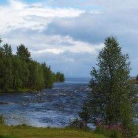 Из серии северные реки :: Ольга