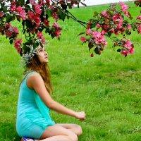 Весны прекрасные цветы :: Vera Ostroumova