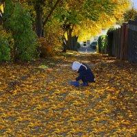 Осень :: Jakob Gardok