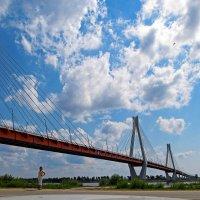 Муромский вантовый мост :: east3 AZ