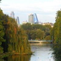 Гайд парк в Лондоне :: Галина