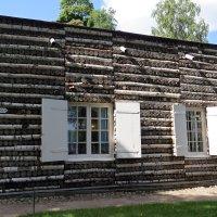 Берёзовый домик :: Вера Щукина