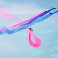 авиашоу в Самаре в честь дня флага России :: Алексей Головин