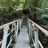 Bridge :: silvestras gaiziunas gaiziunas