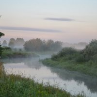 Туманное утро :: demyanikita