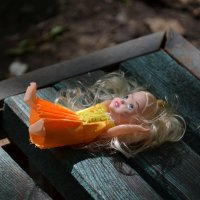 Кукла  потеряшка :: Алексей