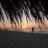 Встречают солнышко...) :: Тамара Бедай