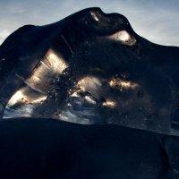 Хранители Арктика. :: игорь кио