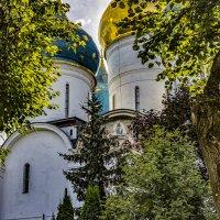 Купола Успенского собора Троице Сергиевой Лавры :: Сергей Козырев