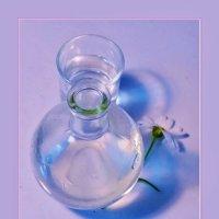этюд со стеклом... :: Elvira E.