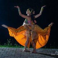 Шоу балет :: Давид Манакьян