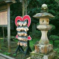 Остров Enoshima Эносима Япония :: Alm Lana