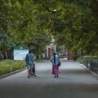 Прогулки в парке :: Валентин Семчишин
