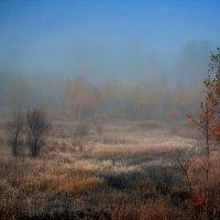 Утро.Туман. :: Владимир Гришин