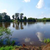 Река Клязьма летом :: Натала ***