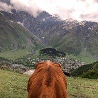 В горах Кавказа :: Сергей Колганов