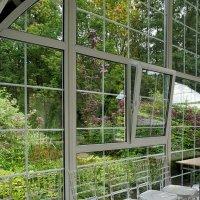 Таинственный сад ... :: Лариса Корж