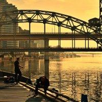 Городские рыбаки... :: евгения