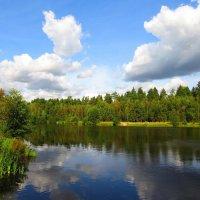 Облака над прудом :: Андрей Снегерёв