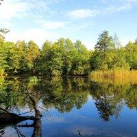 Отражаясь в озере :: Андрей Снегерёв