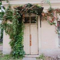 Винтажная дверь :: Елена Белова