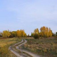 Осень бродит по лугам. :: сергей