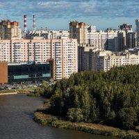 Красносельский район Санкт-Петербурга :: Роман Алексеев