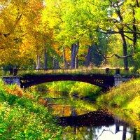 Старый мост через Виттоловскую протоку  - 2 :: Сергей