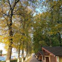 Осень в Зарайске. Улица Кузнецкий спуск. :: Yulia Raspopova