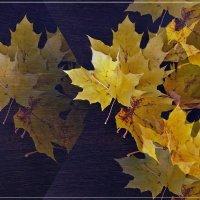 Листья закружат, листья закружат... :: muh5257