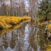 Лесная река :: Дмитрий Иванов