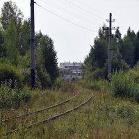 Бывший кирпичный завод. :: ВикТор Быстров
