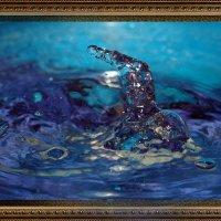 Капля воды творит чудеса. Плавец. :: hanter-62