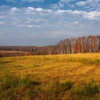 Уж небо осенью дышало... :: Ольга Гуськова