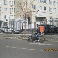 курьерская доставка по москве :: Maikl Smit