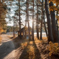 золотая осень :: Алексей Клименко