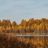 золотая пора :: Владимир Зеленцов