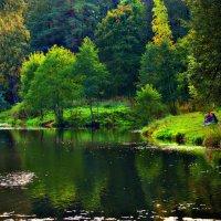 Шуваловский парк. :: евгения
