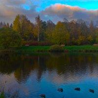 Закат в Баболовском парке :: Сапсан