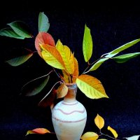 «Осень — это вторая весна, когда каждый лист — цветок.» Альбер Камю :: TAMARA111777