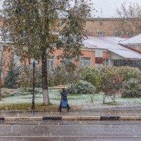Первый снегопад. :: Анатолий. Chesnavik.