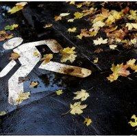 Осенняя :: Сергей Малашкин