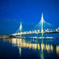 Вид на мост через Петровский форватер в Санкт-Петербурге :: Алексей Кошелев