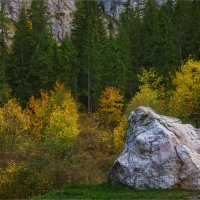 В карпатских горах :: Shapiro Svetlana